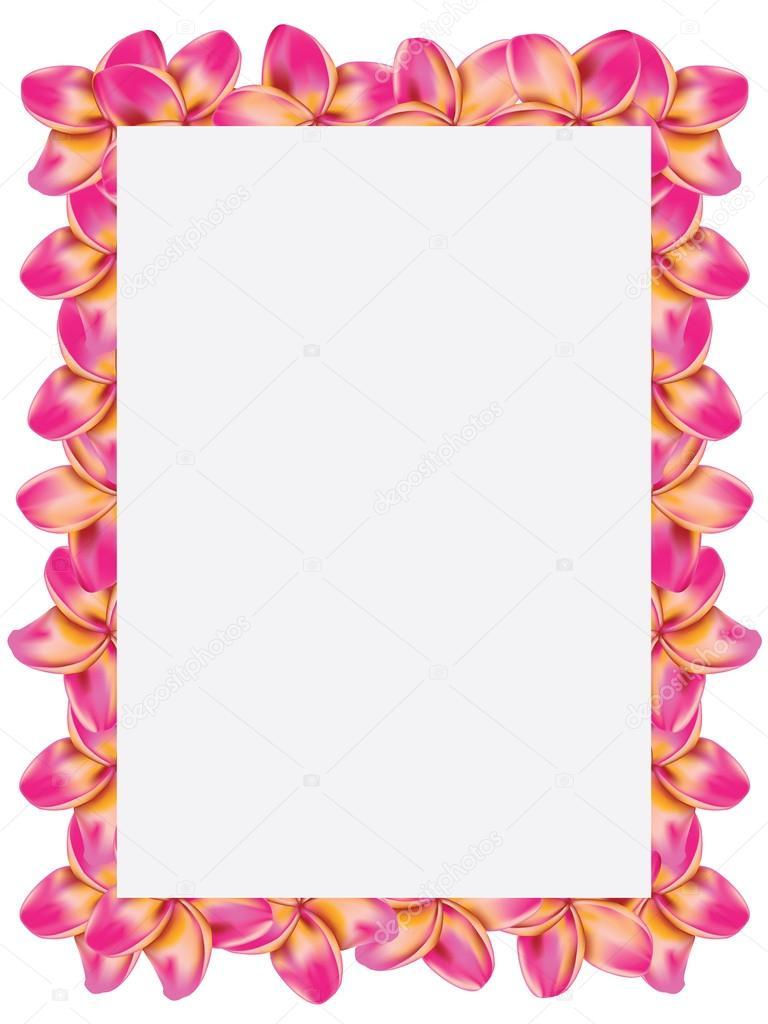 Frangipani frame