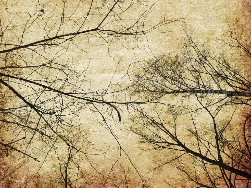 Grunge bare trees silhouettes