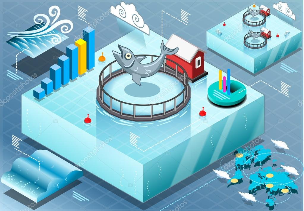 Isometric Infographic of Sea Farmed Fish