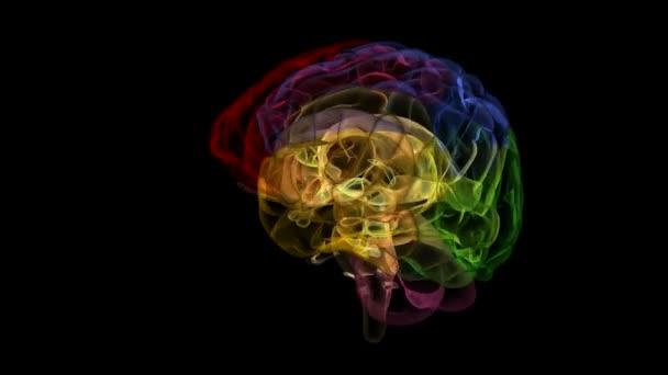opakování mozku xray díly 17 alfa matný