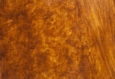 Walnut wood abstract