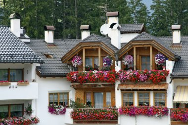 Balcony flowers with red Geraniums