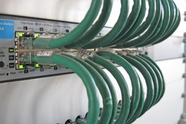 Green computer network cable in a rack of data processing center