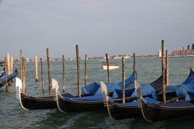 gondolas in Venice lagoon docked at the port