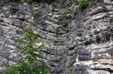 visible layers of rock in a quarry mineral extraction
