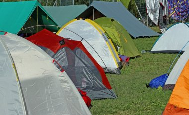 igloo tents and Canadian tent