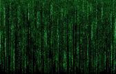 Fotografie zelené digitální kódová čísla v matrix stylu
