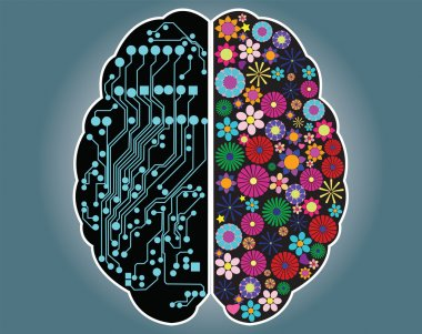 Left and right side of the brain, logic and creativity, vector