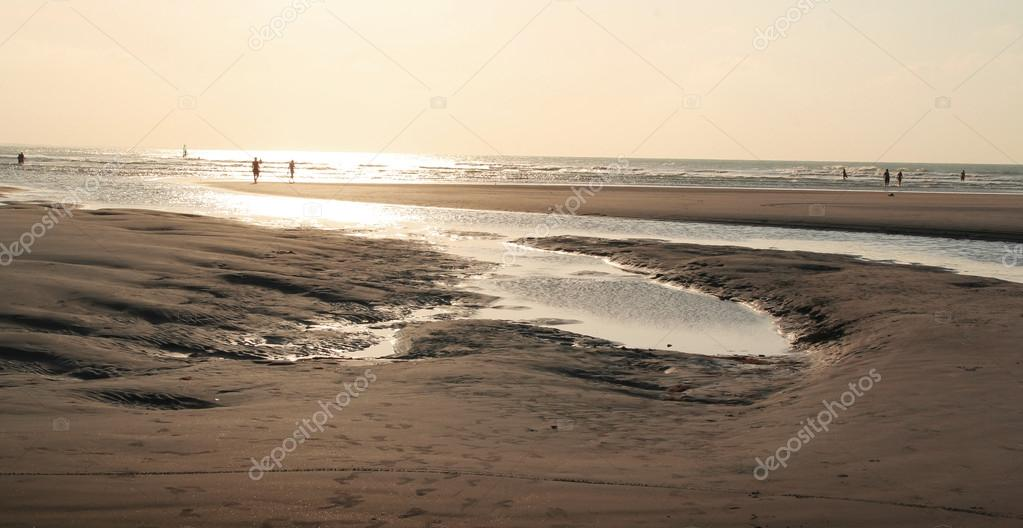 Beach in sepia