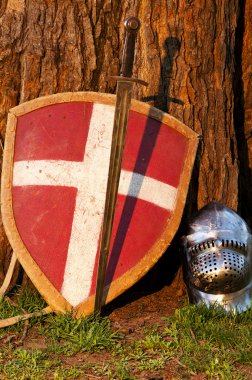 Photo of the shield, sword and the helmet