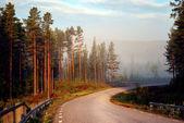 země silnice