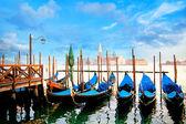 Fotografie Gondolas in Venice