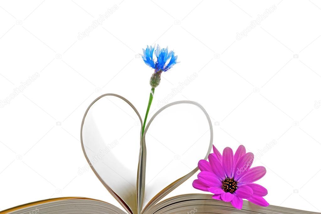 páginas del libro con flores — Foto de stock © PinkBadger #26852809
