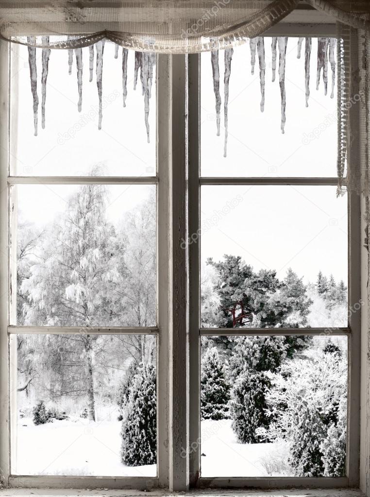 Winter landscape viewed through window