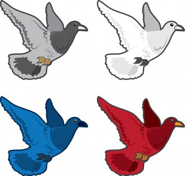 Bird Flying Colors