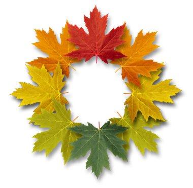 Autumn-Leaves-Frame