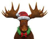 Vánoční Los
