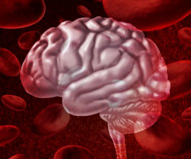Brain Blood