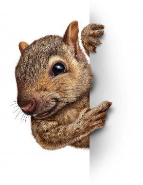 Squirrel Sign