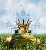 Fotografia concetto di castello principe ranocchio