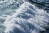 Fotografie mořské vlny