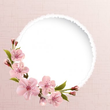 Spring background with pink cherry flowers