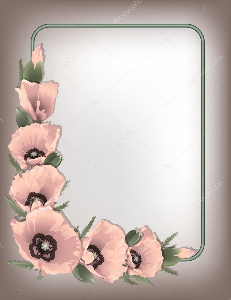 Pink poppies floral frame, vector