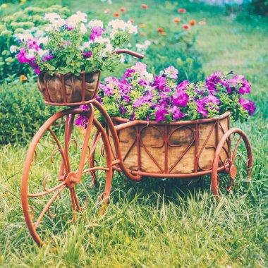 Decorative Bicycle In Garden
