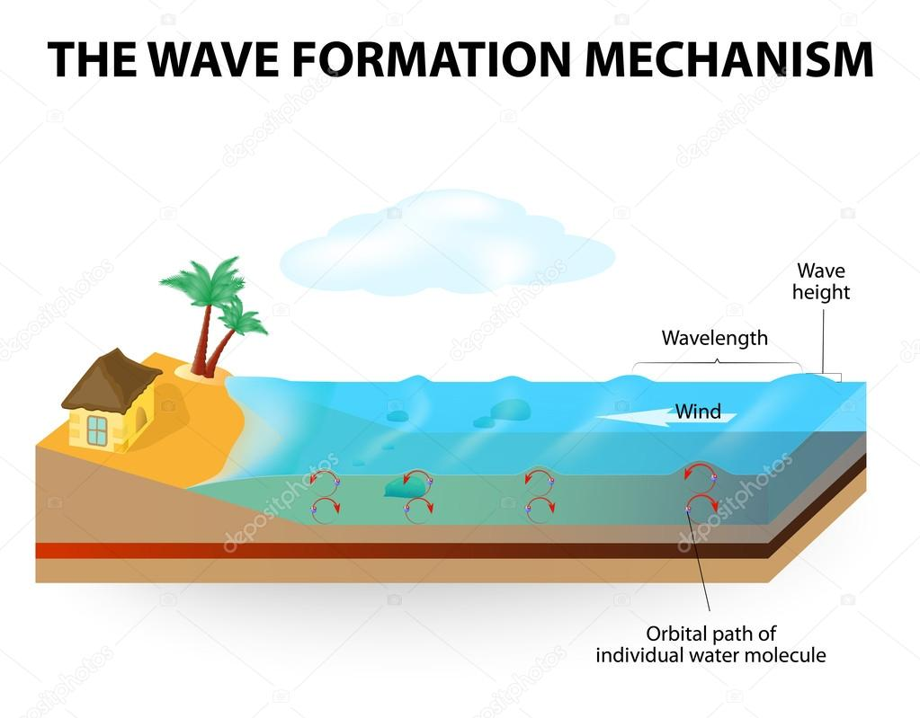 wave formation mechanism