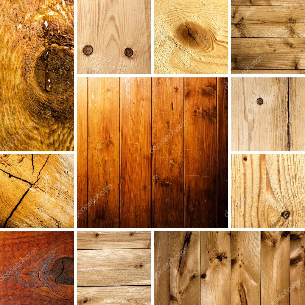 Tree structure knot set collage wood board pattern old wood grain texture hardwood year rings