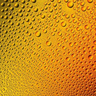 Water drops spectral gradient orange yellow sun summer gold colors rainbow colorful beading lotuseffekt tau sealing