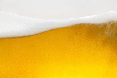 Beer dew drops beer froth glass gold crown foam wave oktoberfest condensing brewery restaurant pils
