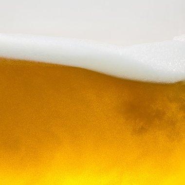 Beer beerfoam beerglass gold foam crown foam wave oktoberfest alcohol brewery restaurant pils