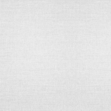 white abstract canvas background