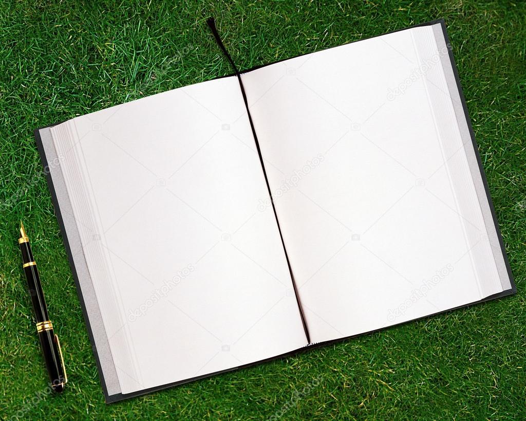 livro aberto em branco fotografias de stock 169 designsstock 13721310