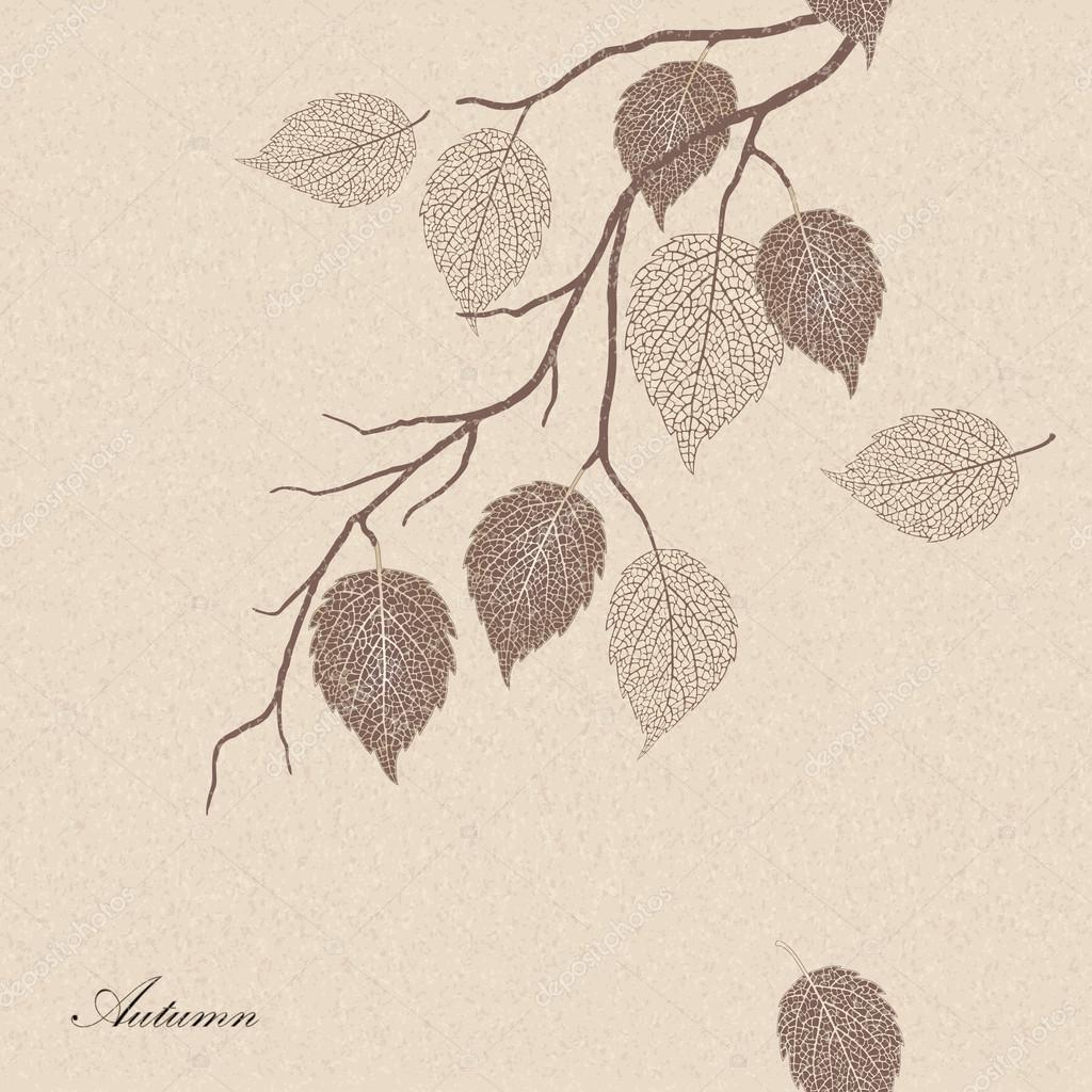 illustration of autumn leaves on a tree branch