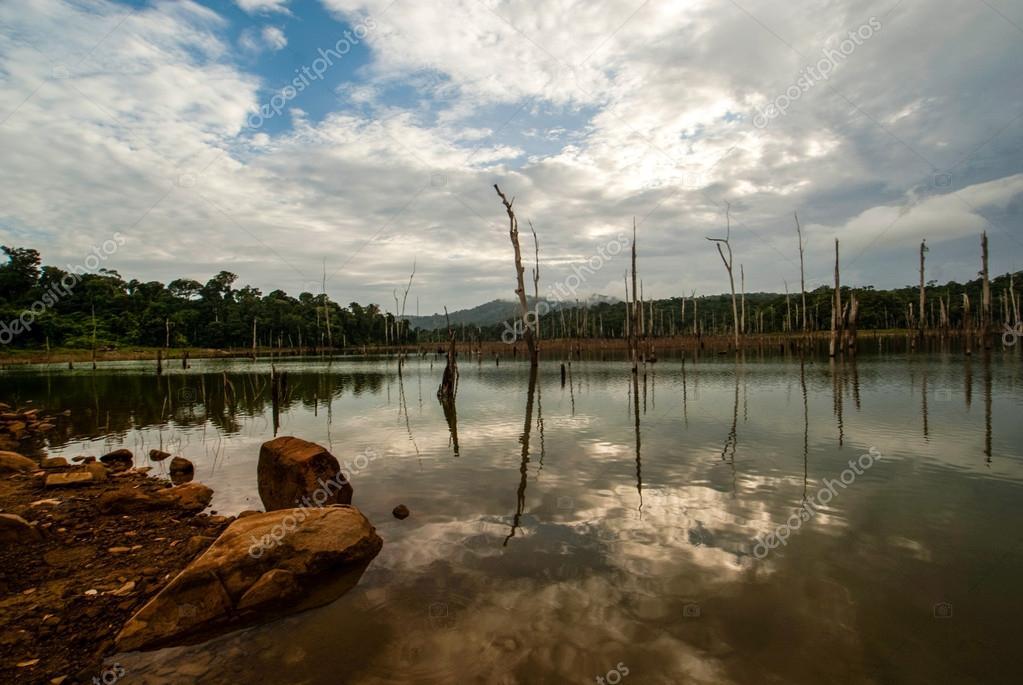 Brokopondo stuwmeer reservoir in Suriname - South America
