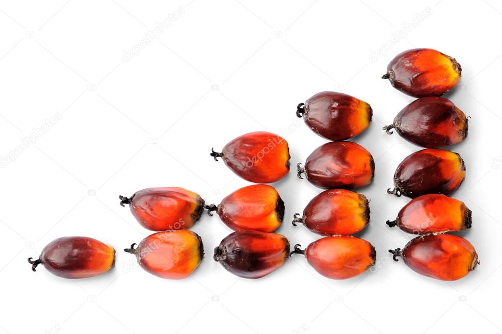 Fresh palm oil seeds