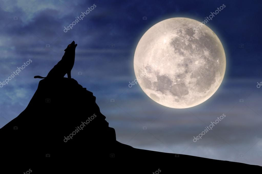 Wolf howling at full moon 1