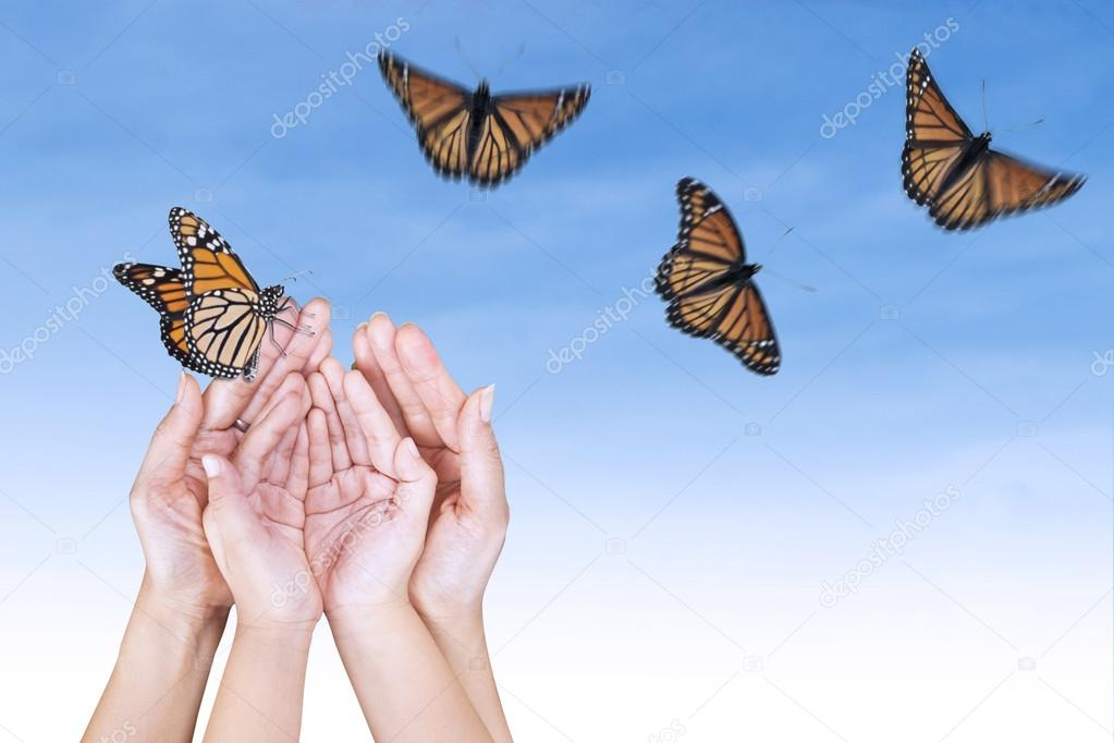 Beautiful butterfly's and open hands
