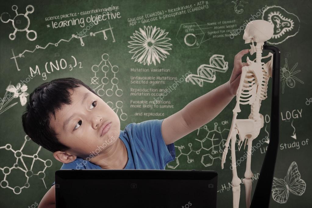 kleiner Junge lernt menschliche Anatomie — Stockfoto © realinemedia ...