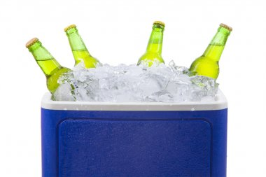Beer bottles in ice box isolated