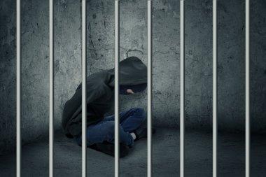 Burglar in jail