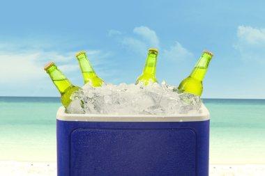 Beer bottles in ice box
