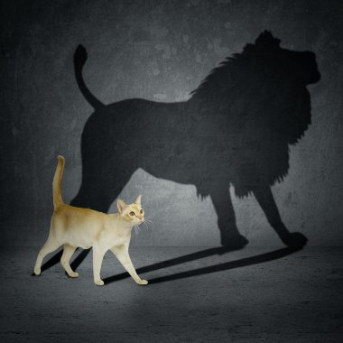 Cat with lion shadow