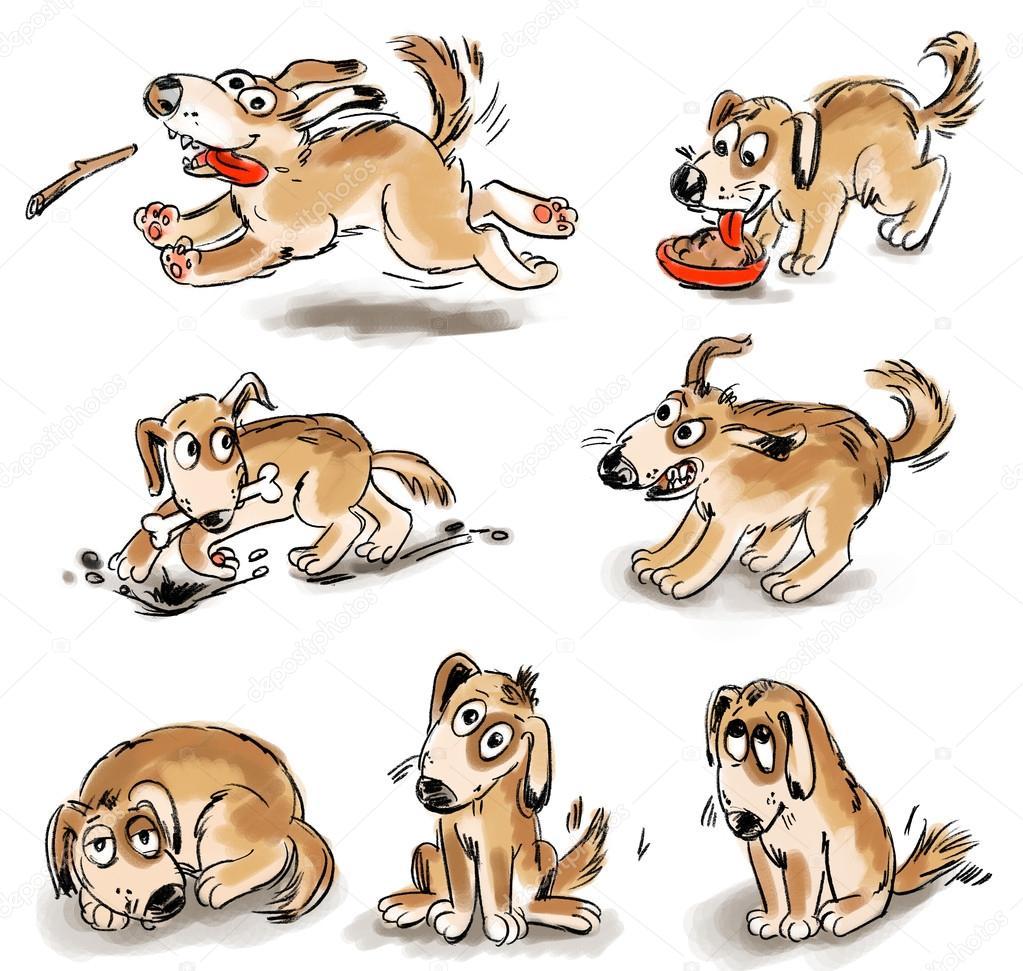Set of puppy fun