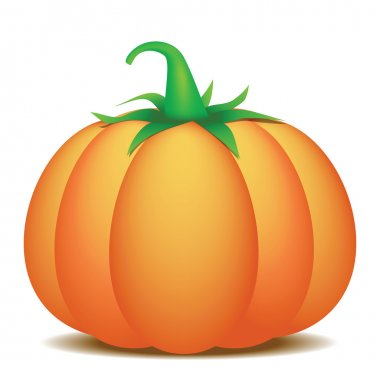 Pumpkin. Vector illustration
