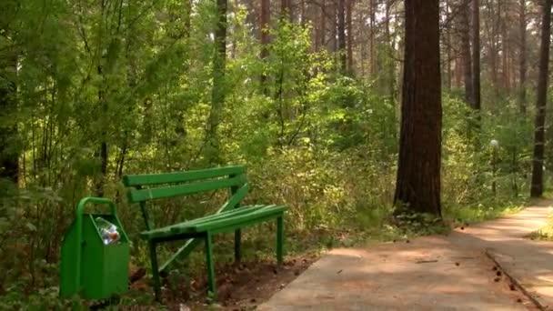 čas zanikla pěšina v lese