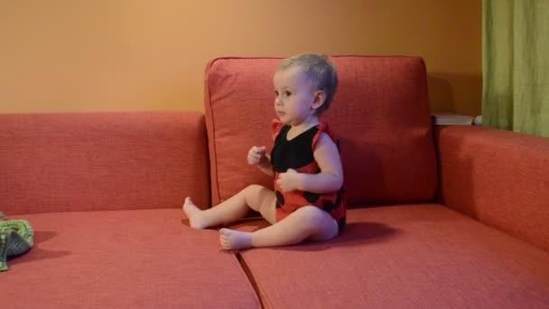 婴儿的瓢虫服装