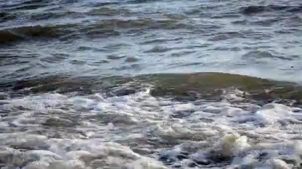 Sea shore waves